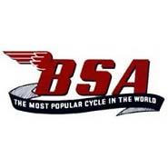 BSA_b