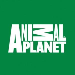 ANIMAL-PLANET_C